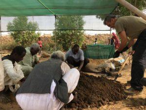 Bergamini d'AICS, sta dirigendo gli agricoltori durante il training